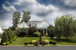 Top 15 Banks for Landscaping SBA Loans